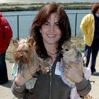 Nanci's dog day care