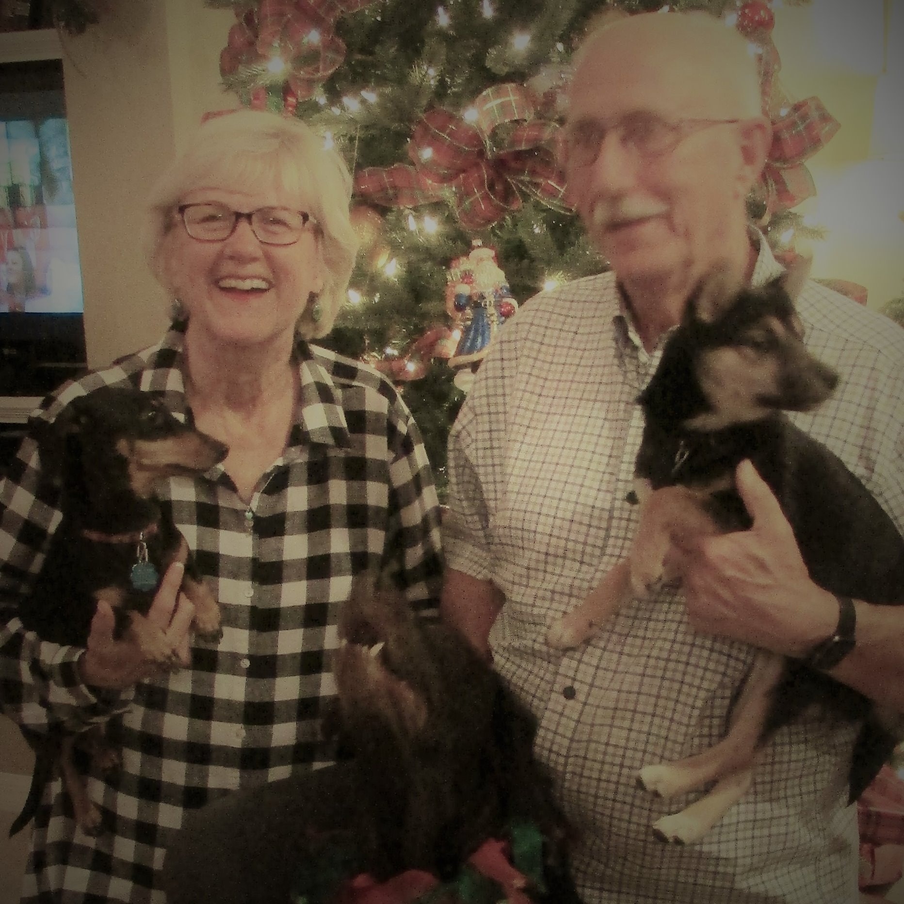 pet sitter Nancy & Jim