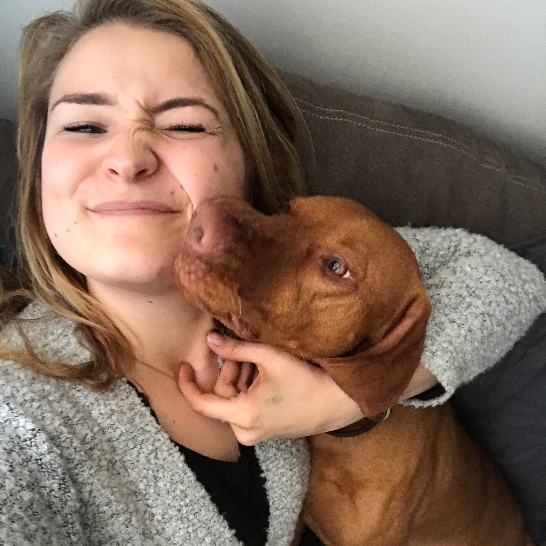 Beth's dog boarding
