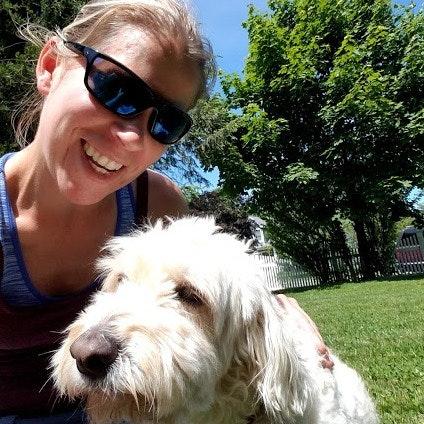 Lindsay's dog day care