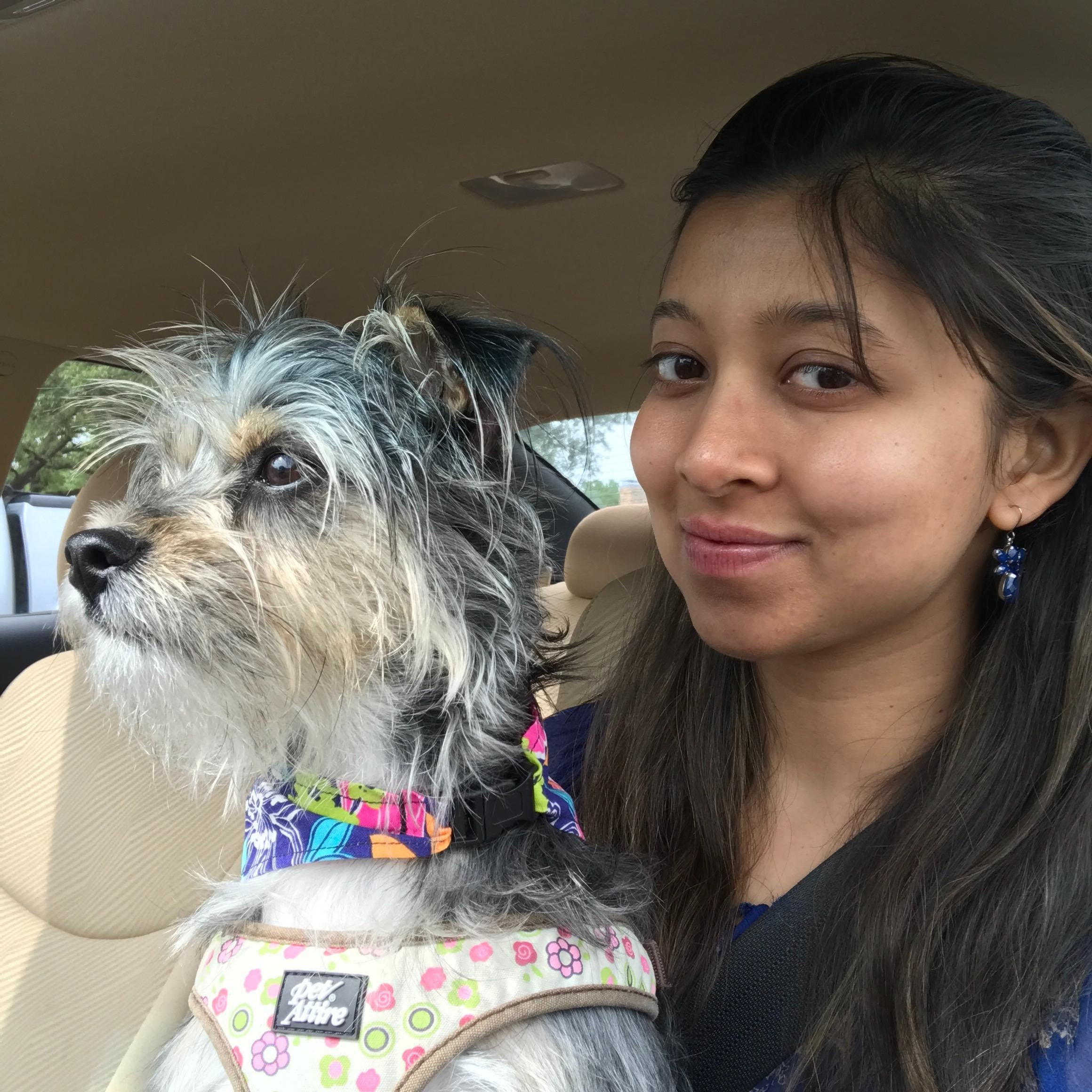 Anubha's dog day care