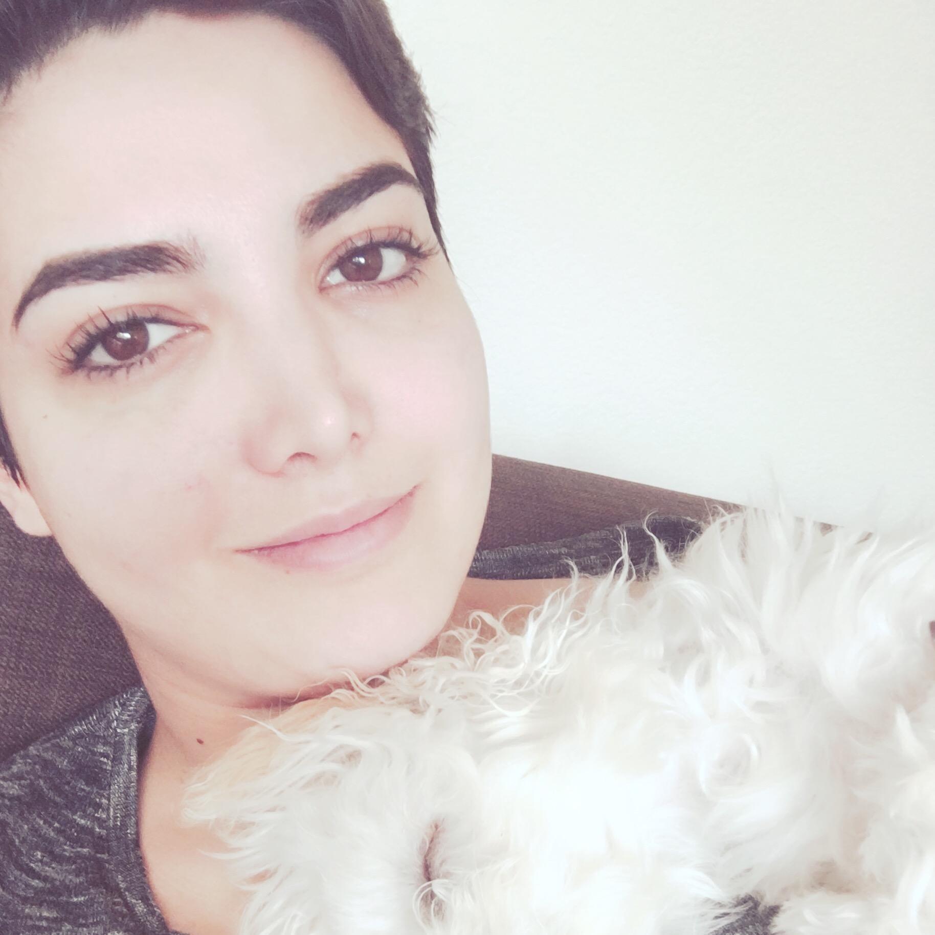 Shirin's dog day care