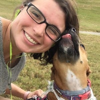 Coribrooke's dog day care