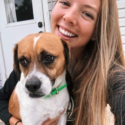 BonnieJean's dog boarding