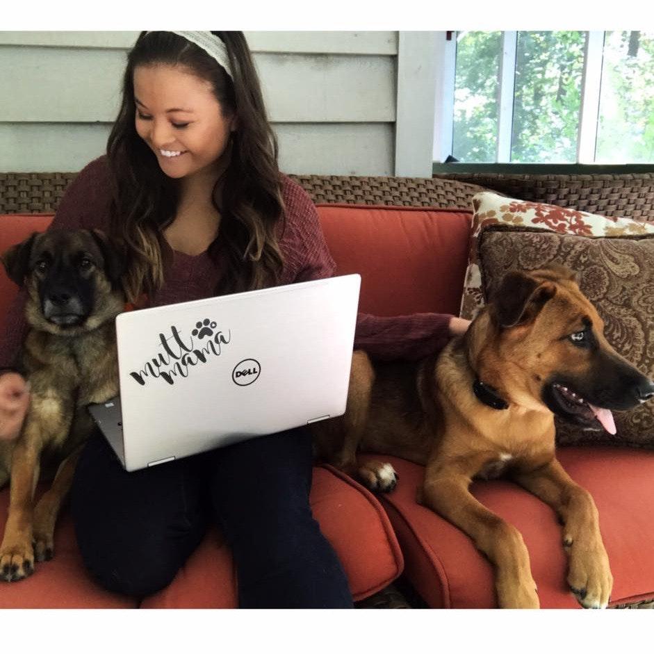 Binh's dog day care