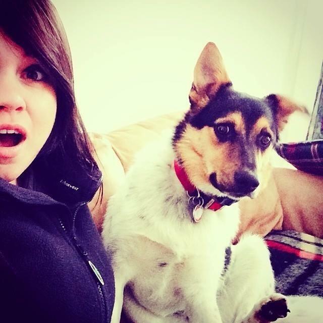 Elise's dog boarding