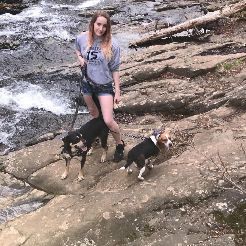 Breanna's dog day care