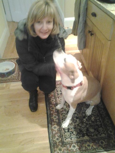 Brenda's dog day care