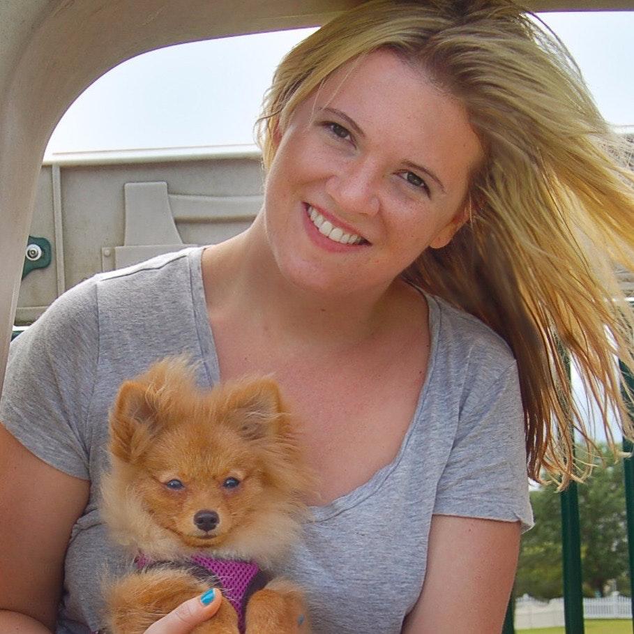 Jenni's dog boarding
