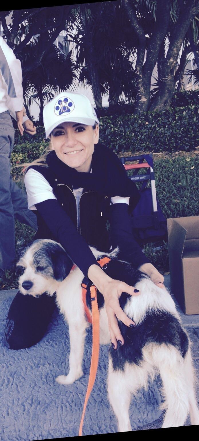 Marina's dog day care