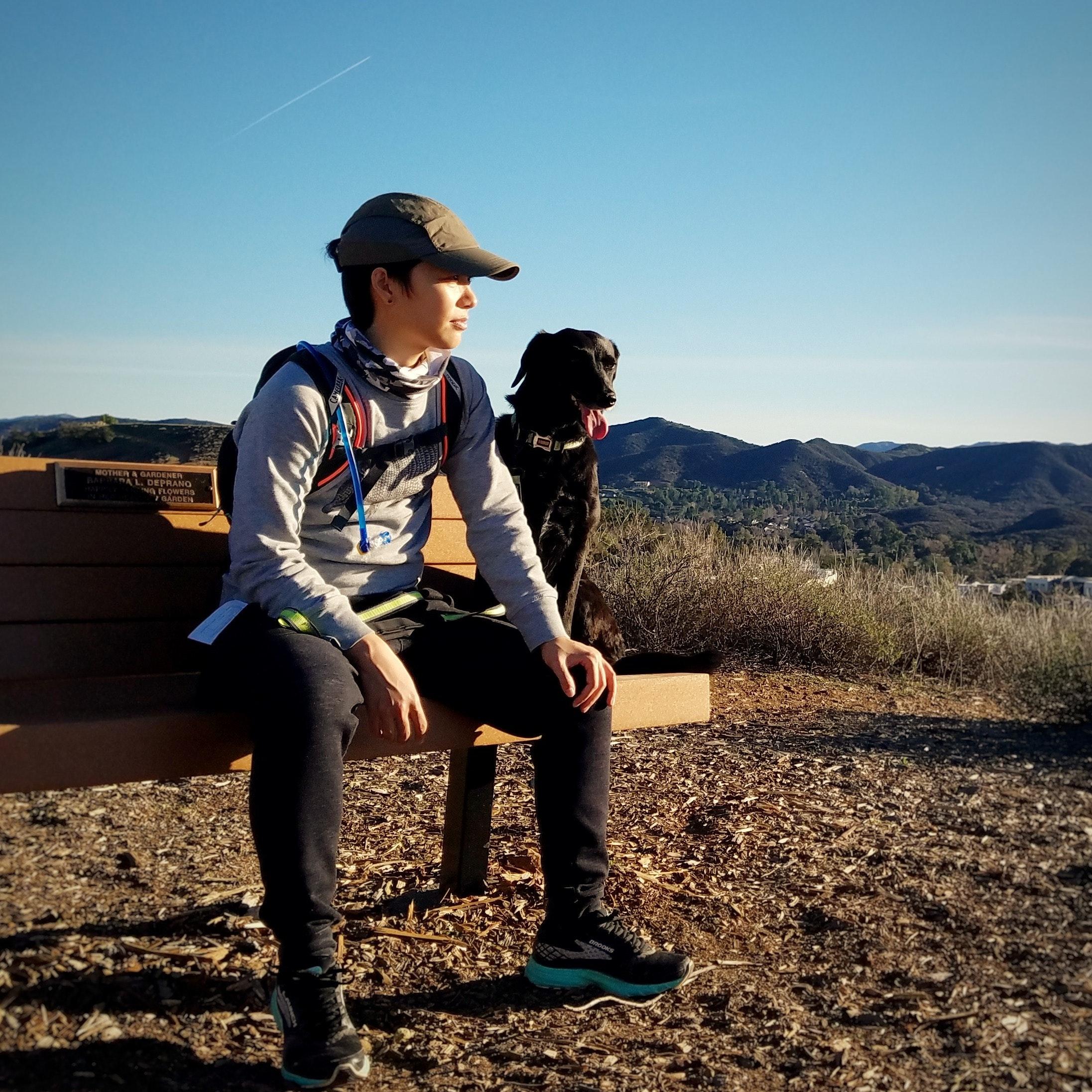 dog walker Ry