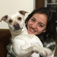 Hella's dog day care