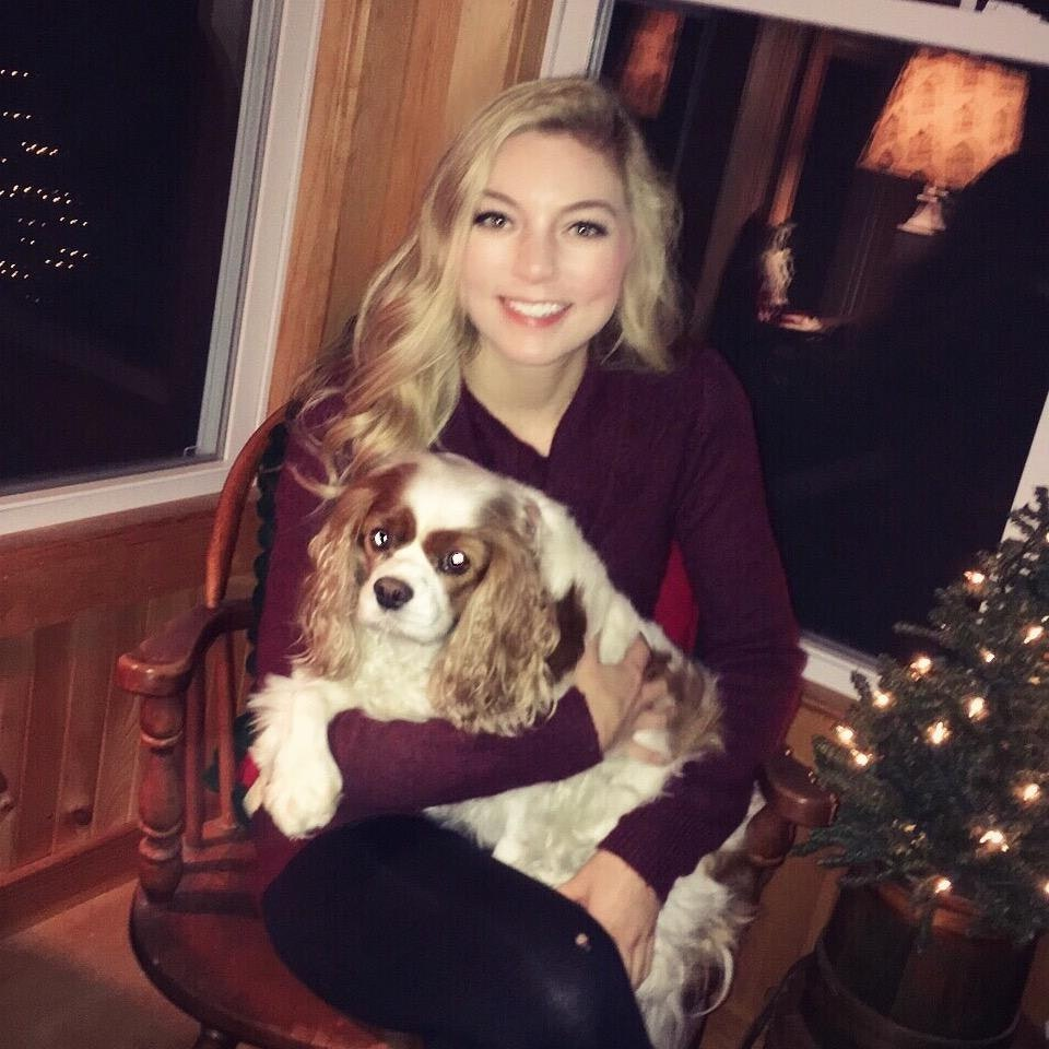 Jenni's dog day care