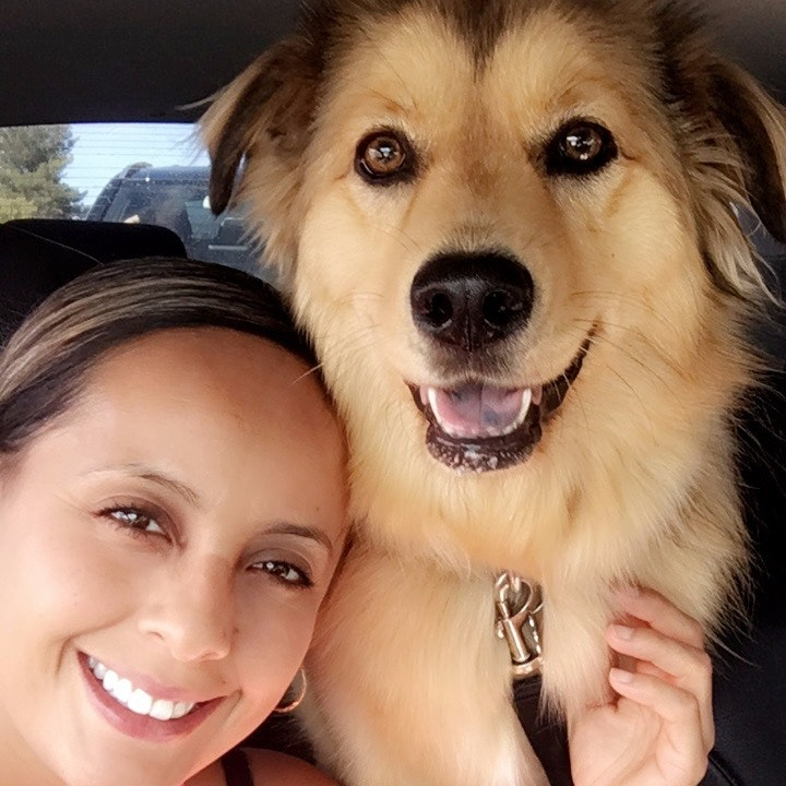 Nelida's dog day care