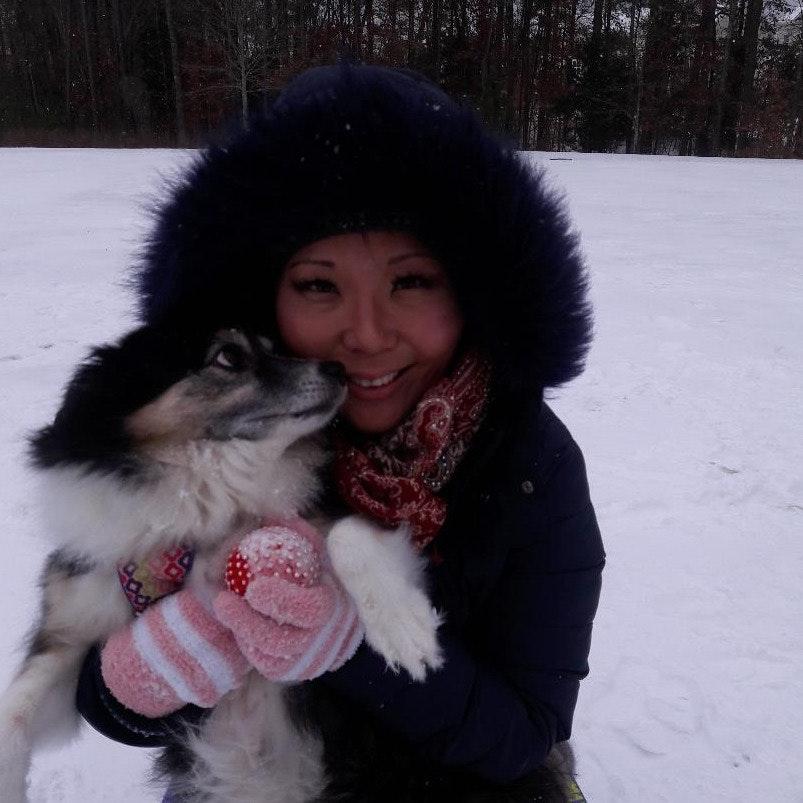 Kris's dog day care