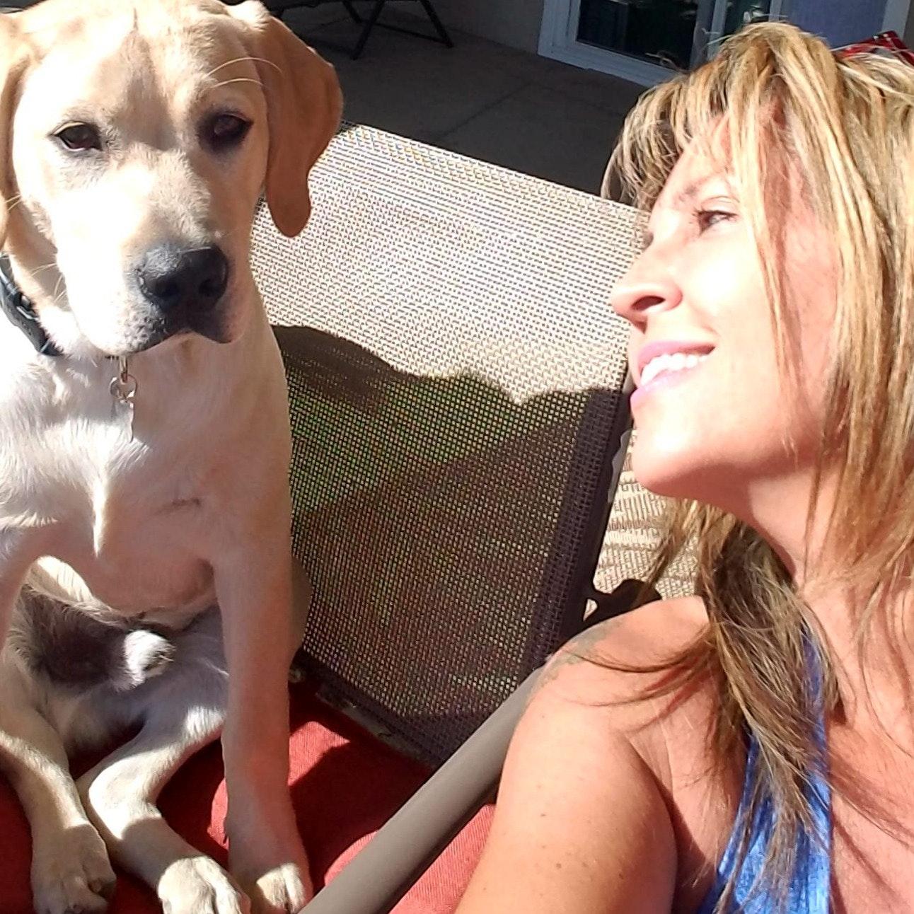Sib's dog day care