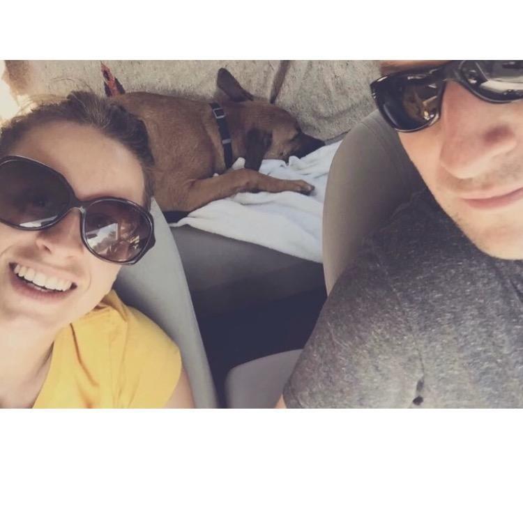Elisa's dog boarding