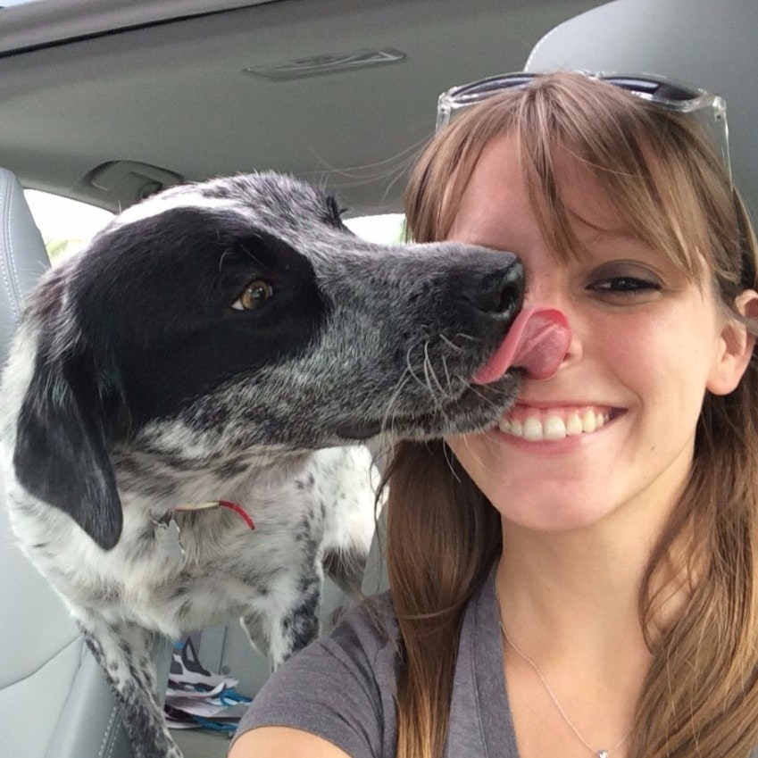 Betsy's dog boarding
