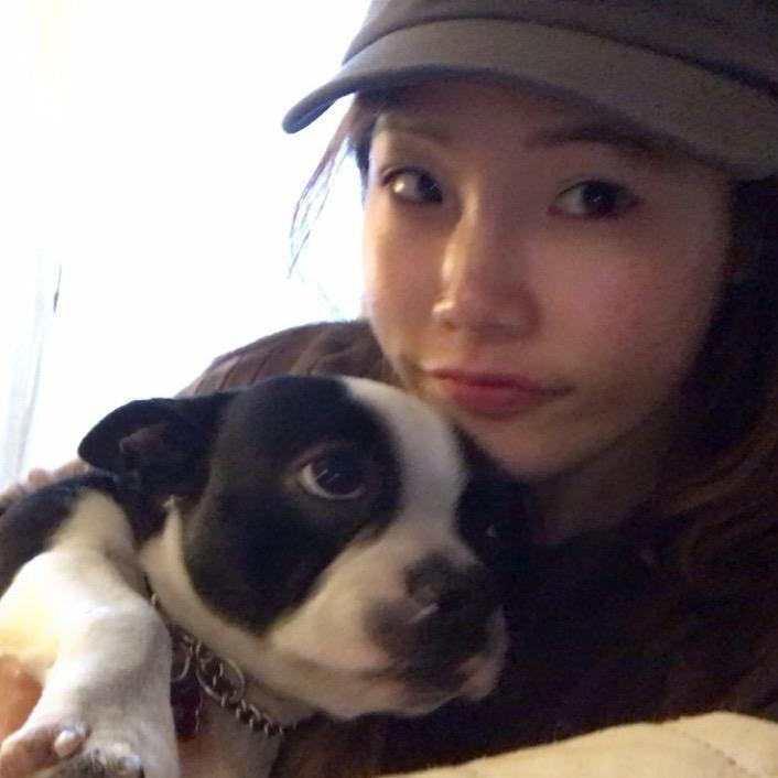 Hyunsoo's dog day care