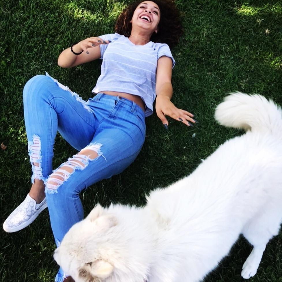 Marola's dog boarding