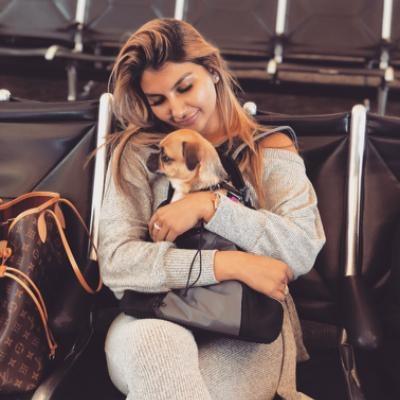 Ishita's dog day care