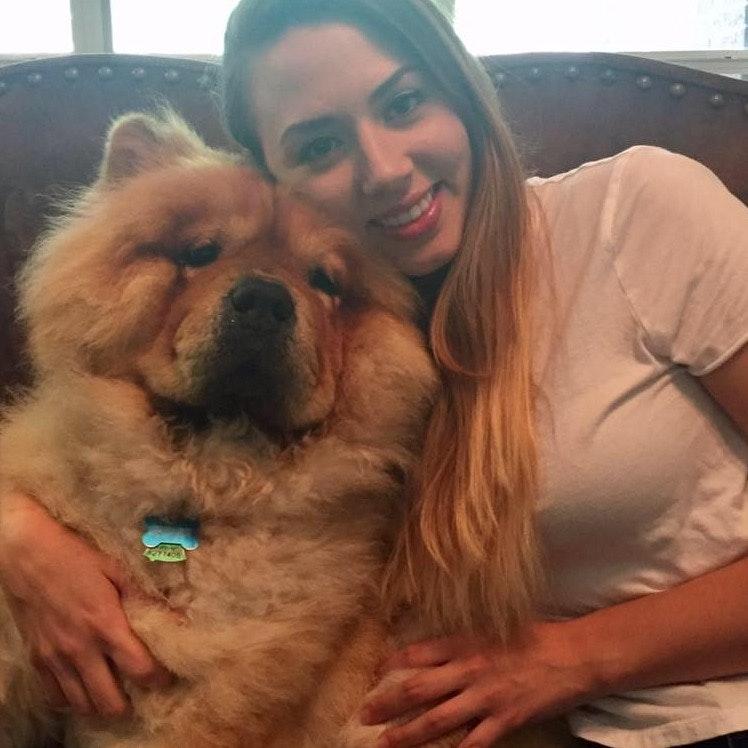 Alysa's dog day care