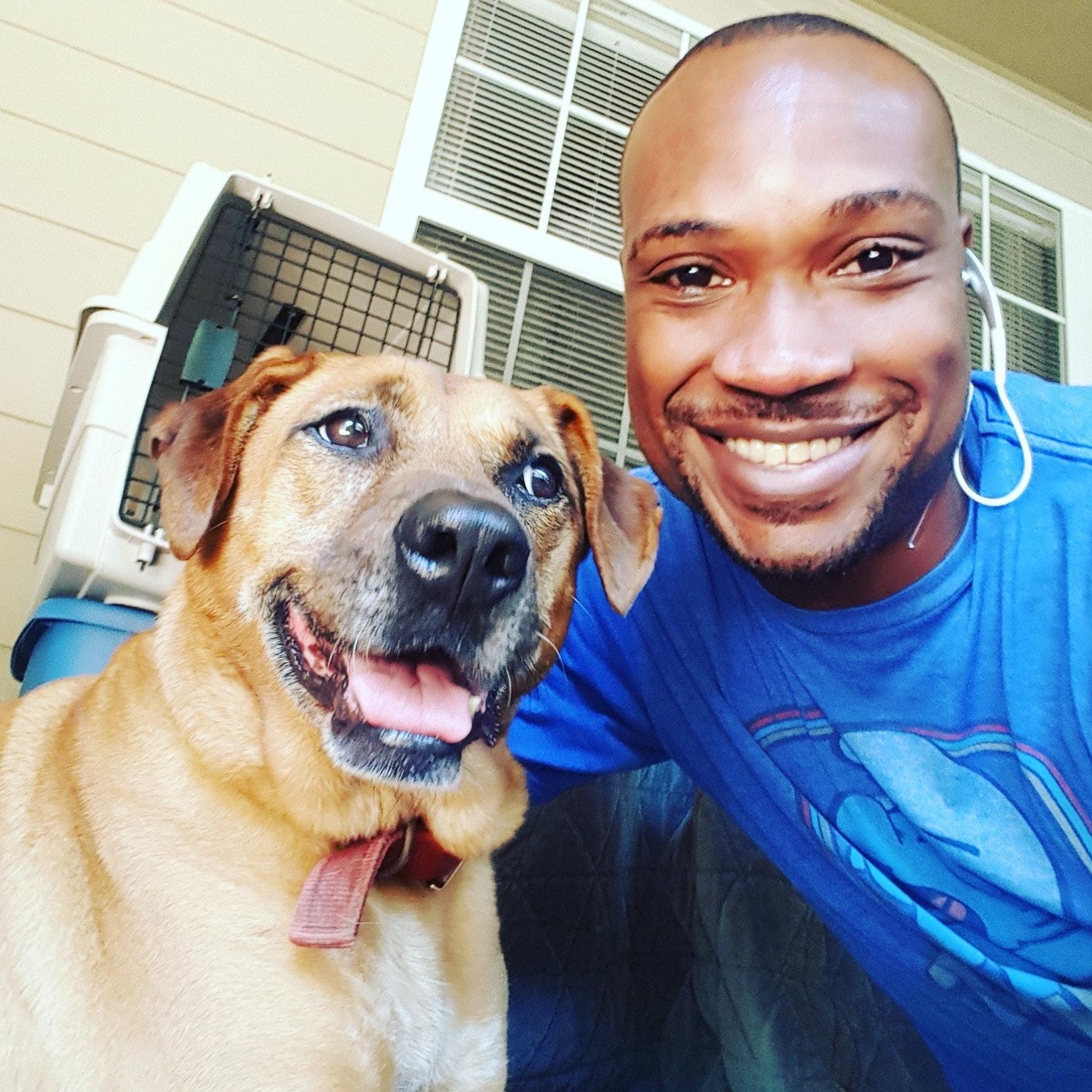 Antoine's dog boarding