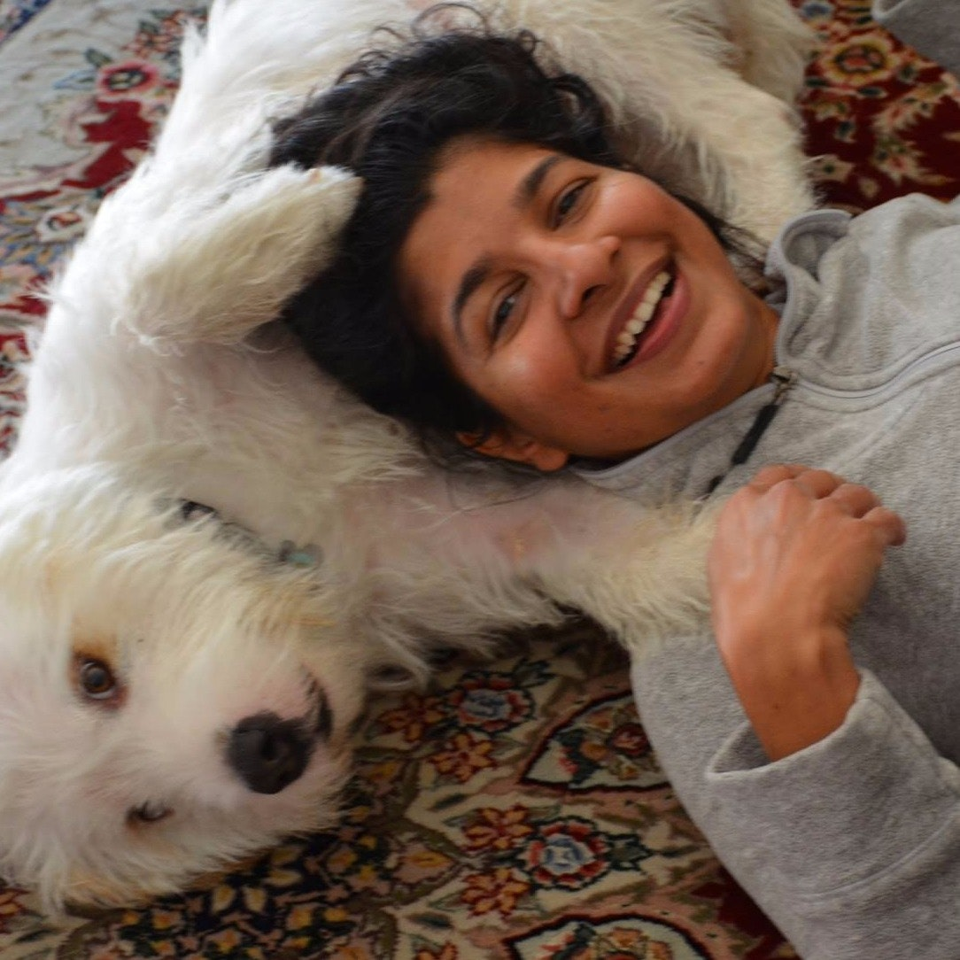 Vineetha's dog day care