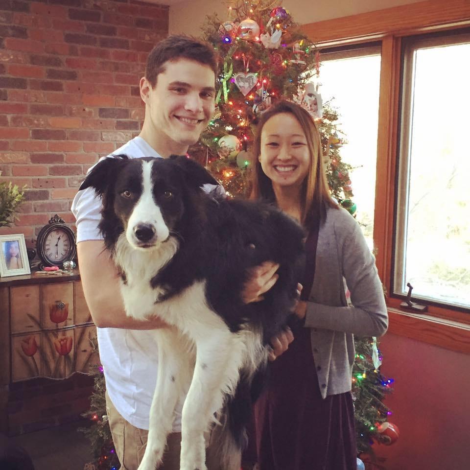 Violet & William's dog boarding
