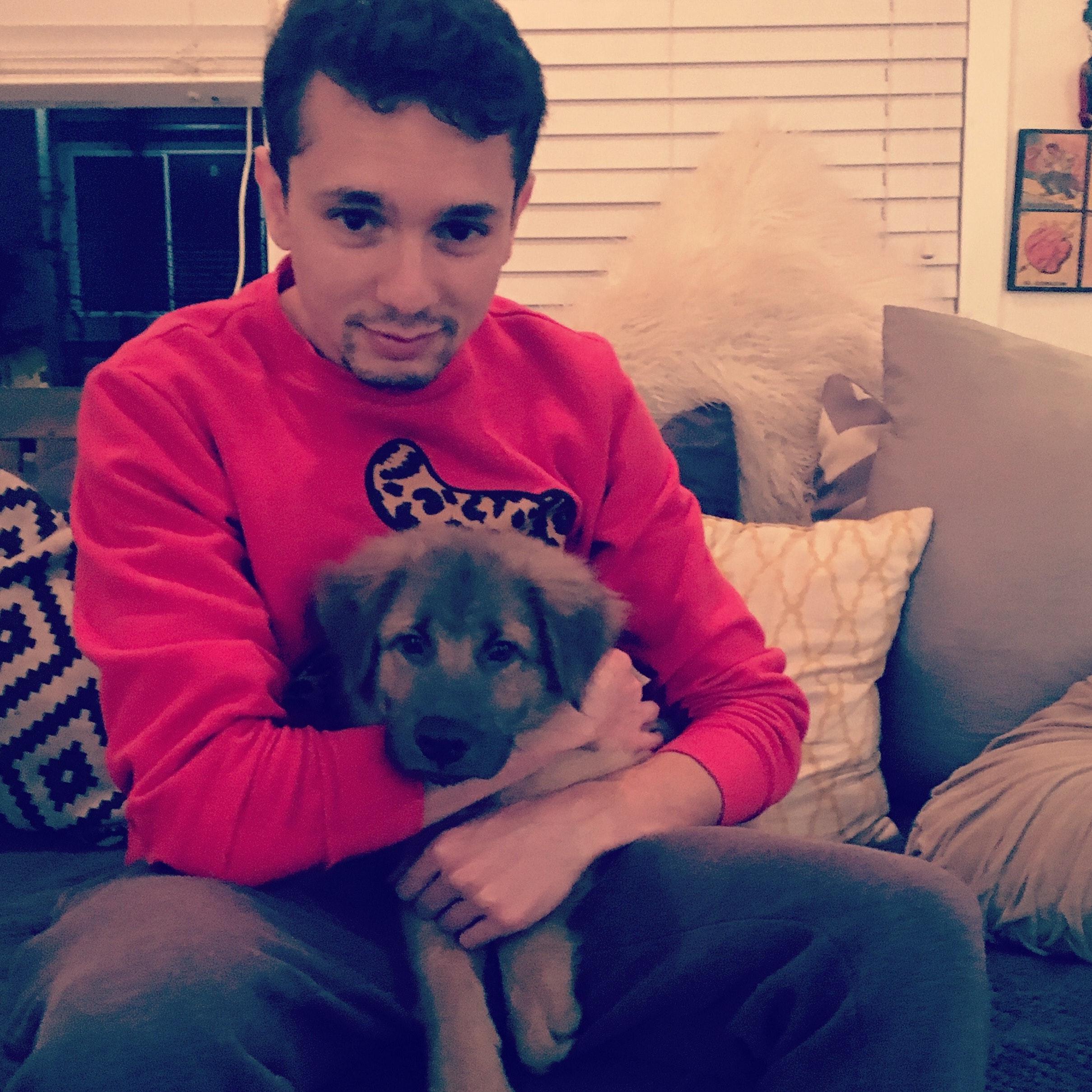 Sasha's dog day care