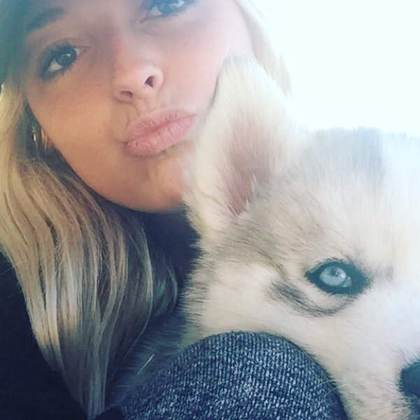 Victoria's dog day care