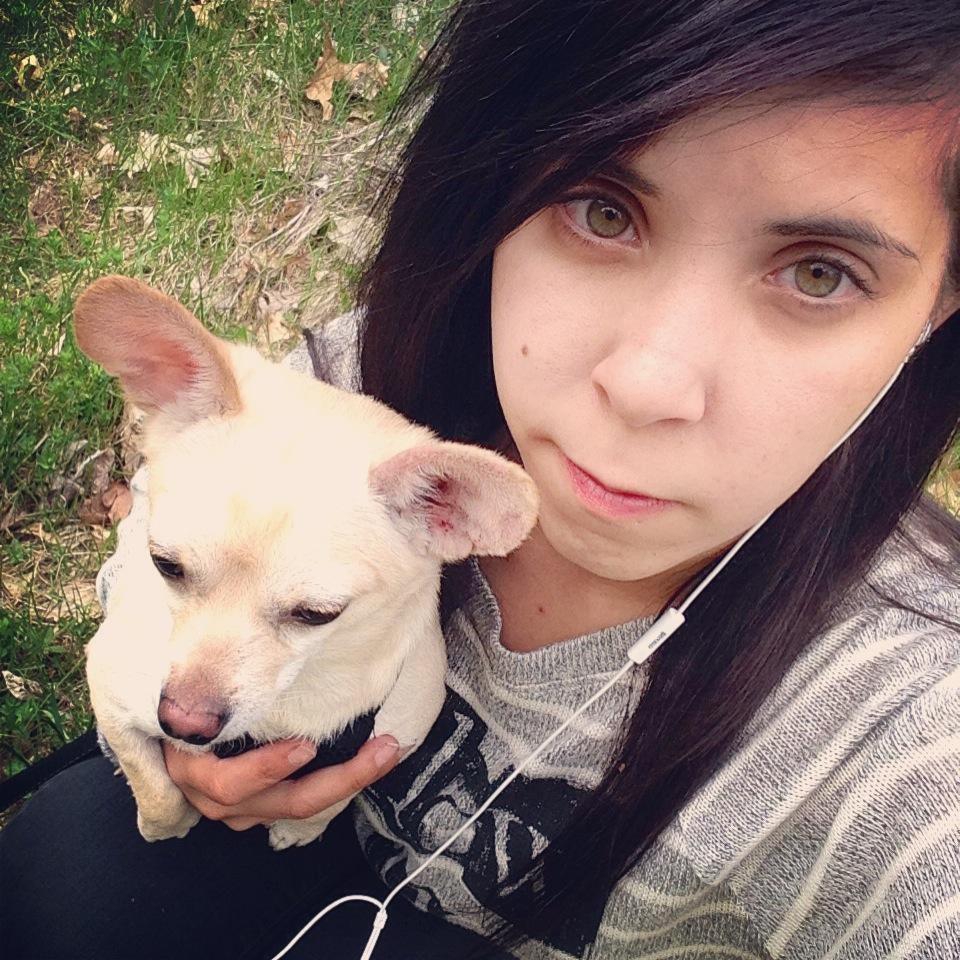 Wileizka's dog day care
