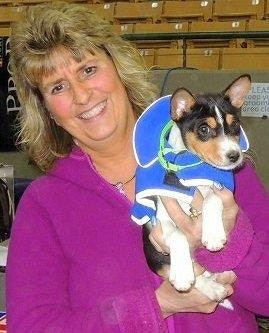 Pamela's dog day care
