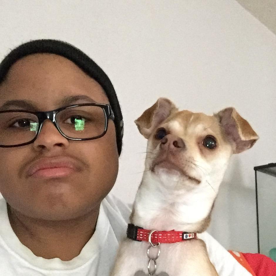 dog walker Jackson