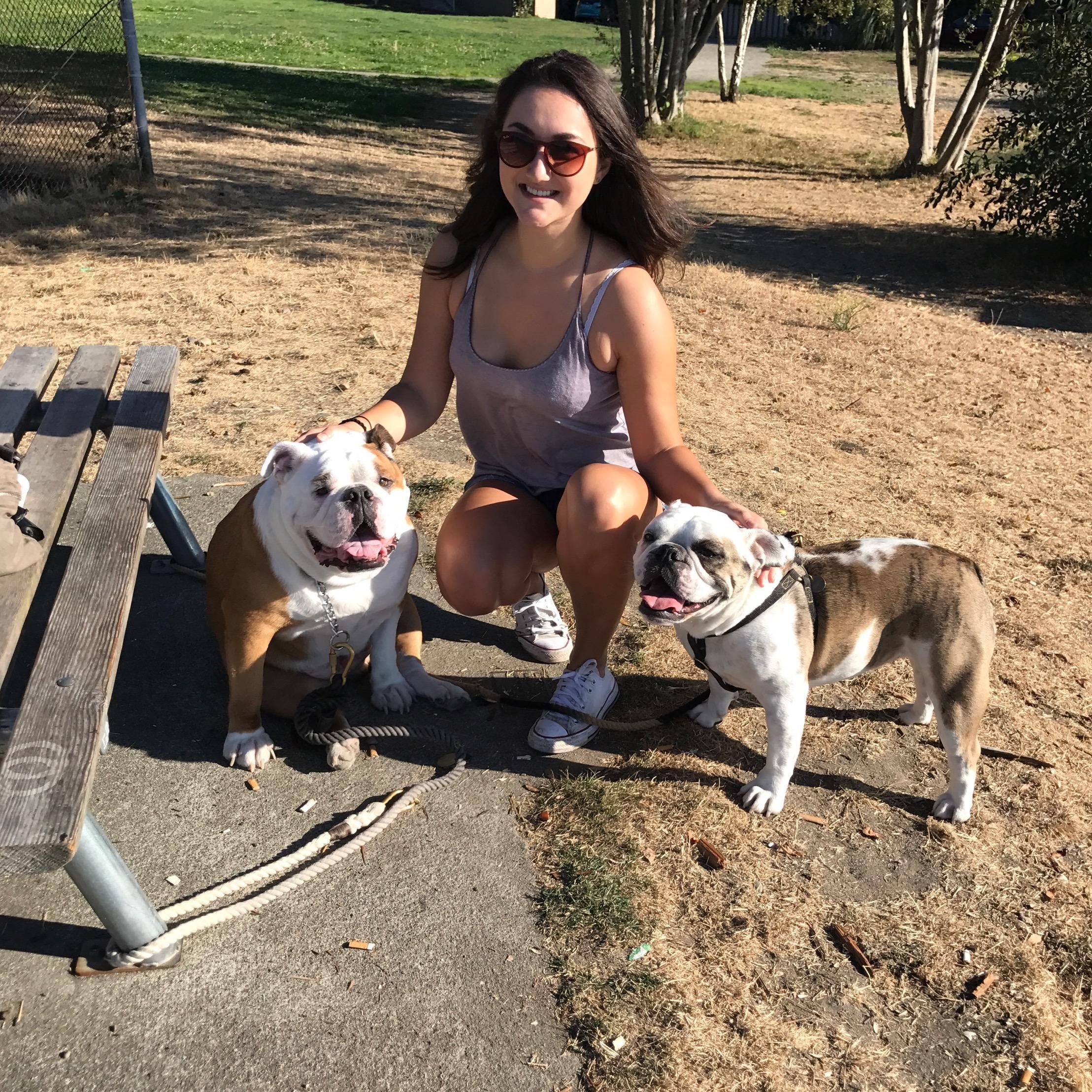Ella's dog day care