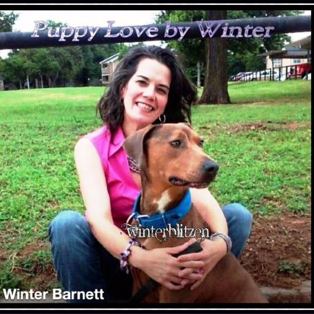 Winter's dog day care