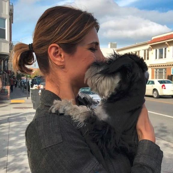 dog walker Sepideh