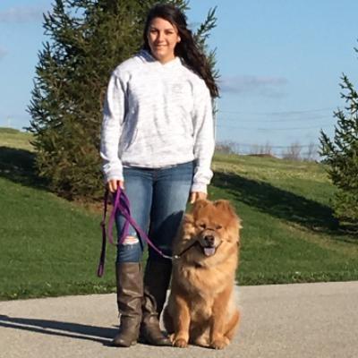 Andrea's dog boarding