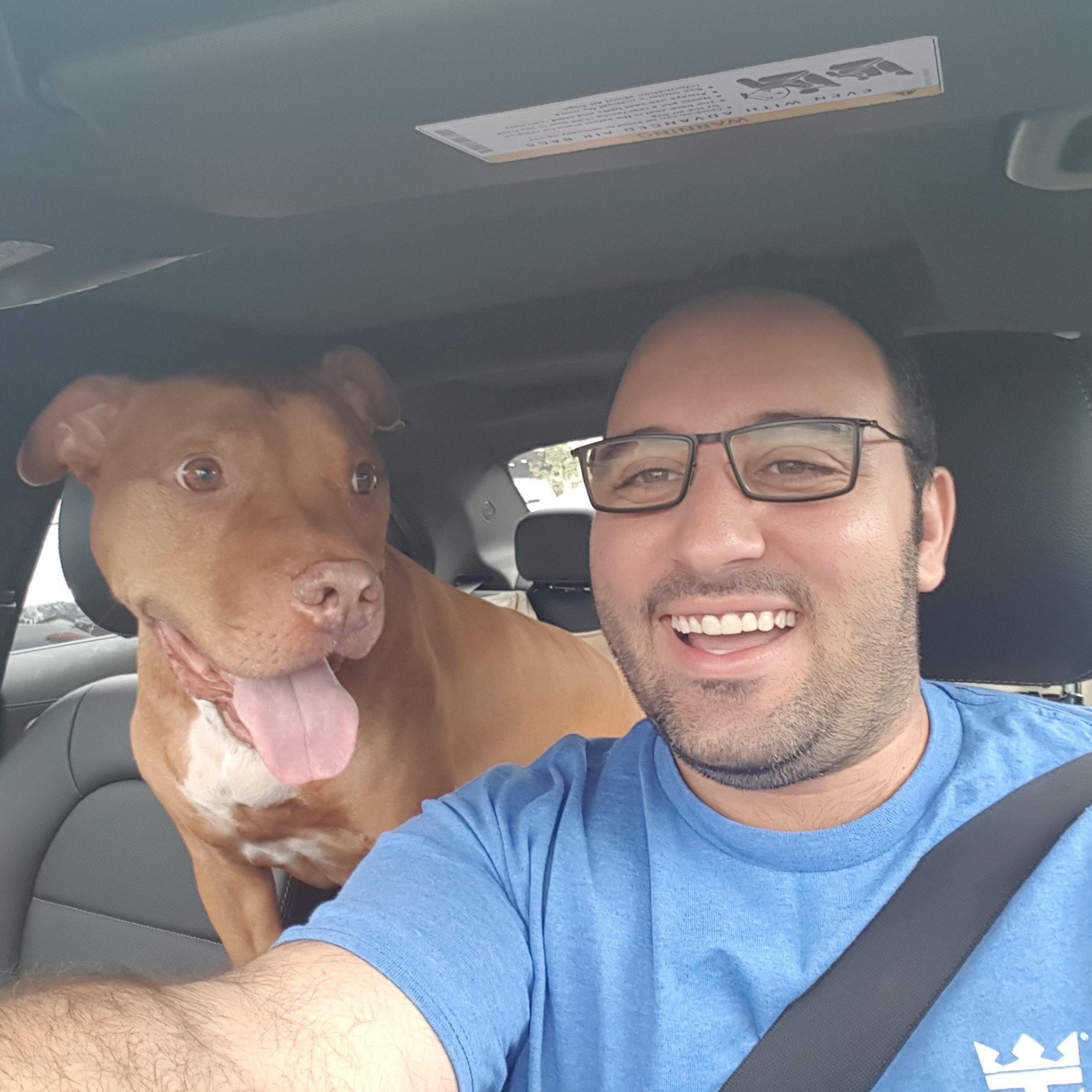 Nizar's dog day care