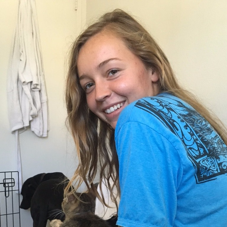 Skylar's dog day care