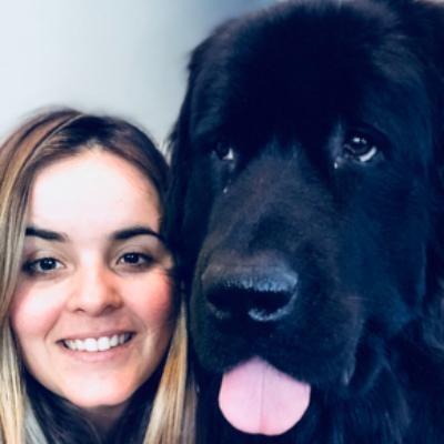 Thabata's dog day care