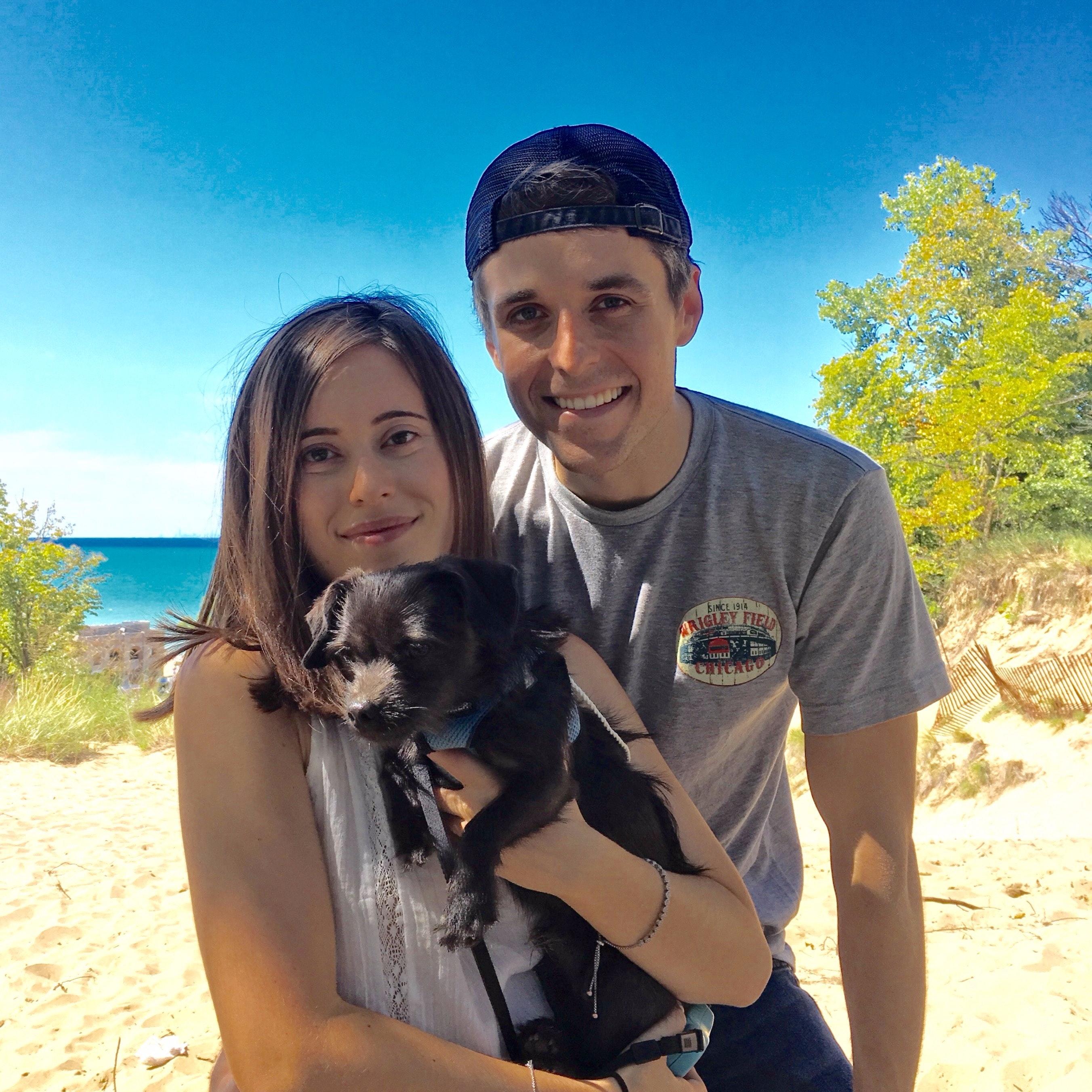 Nousha's dog day care