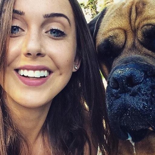Ally's dog boarding