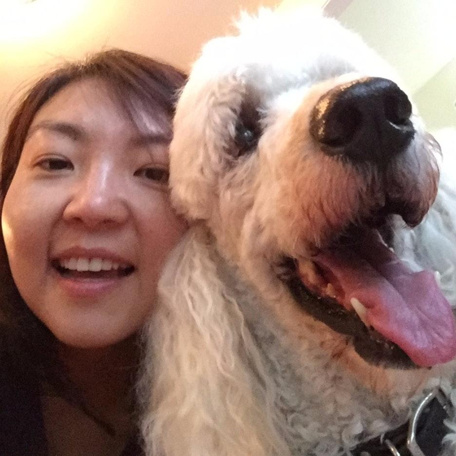 Cynthia's dog boarding