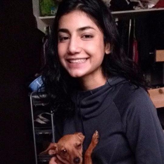 Anahita's dog boarding