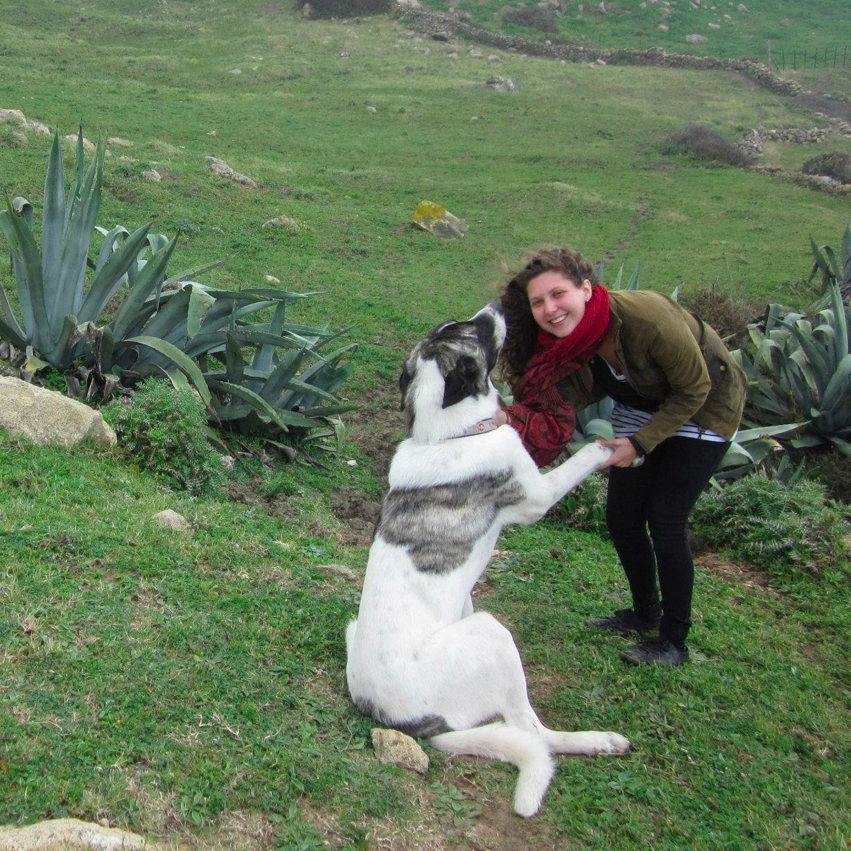 dog walker Maia