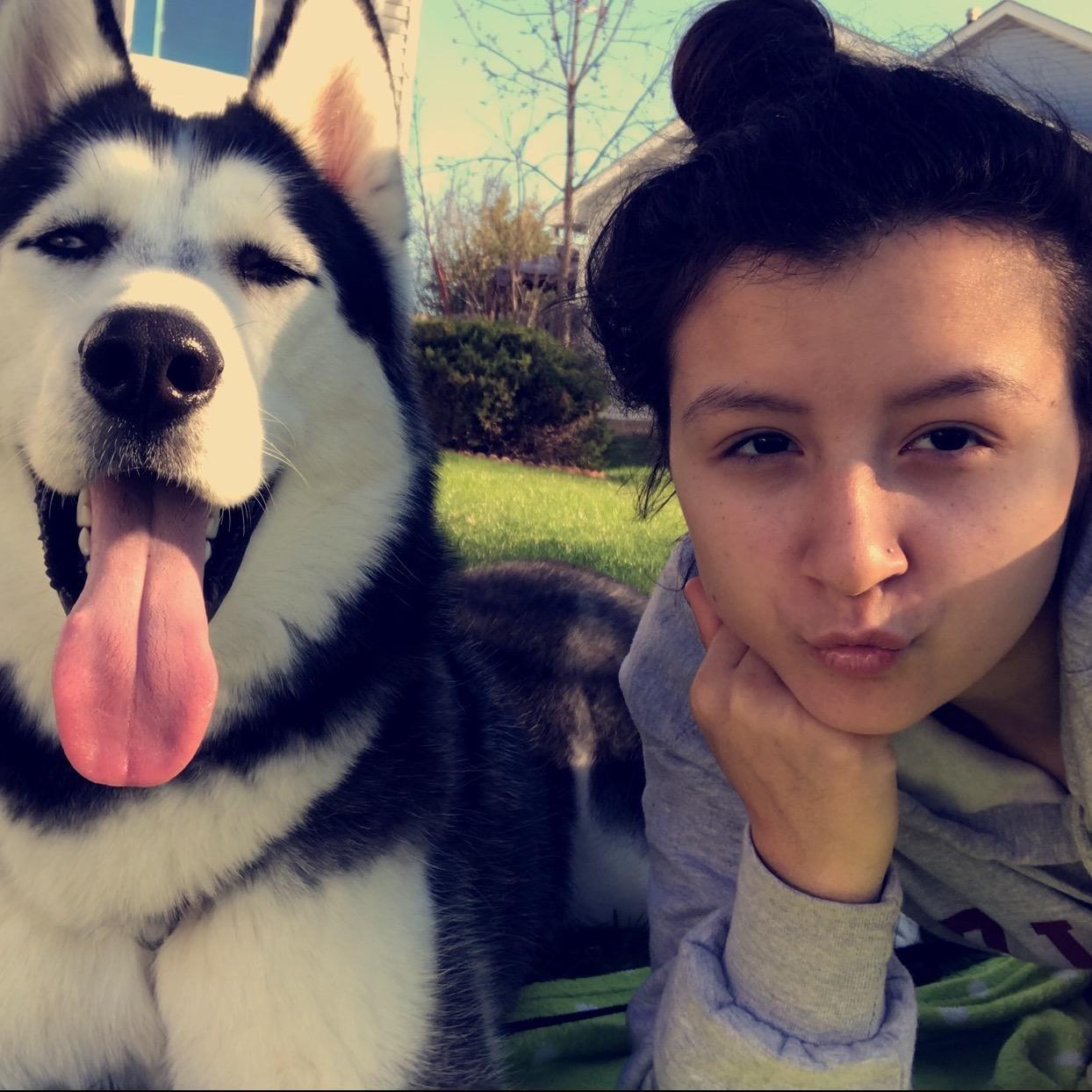 Maija's dog boarding