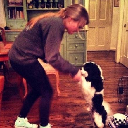 Margot's dog boarding
