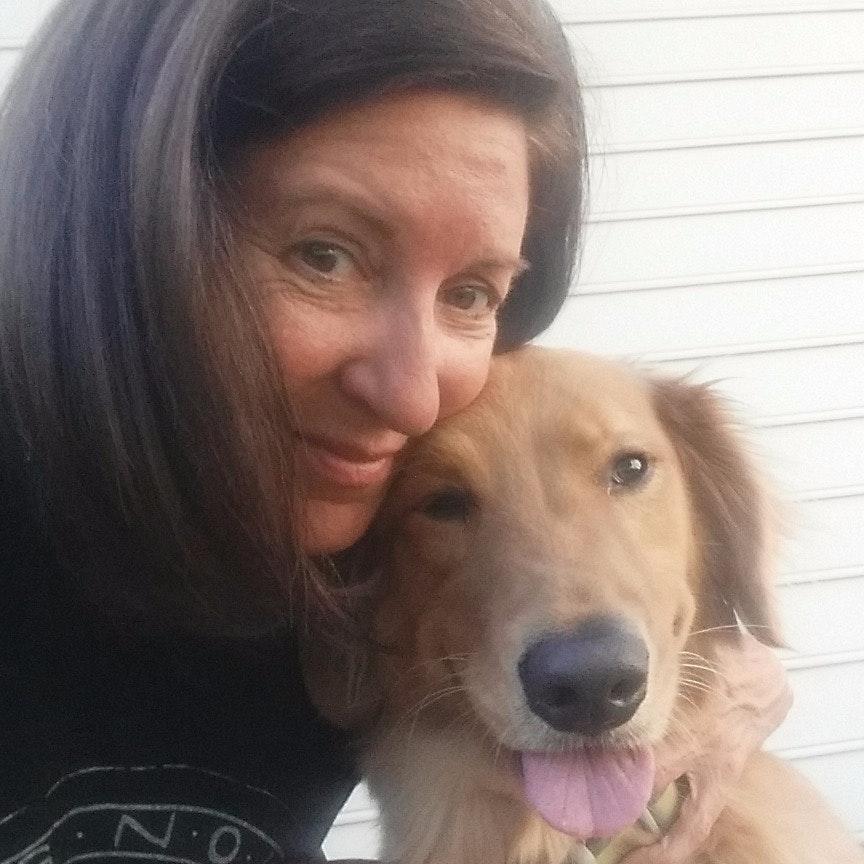 Debra's dog day care