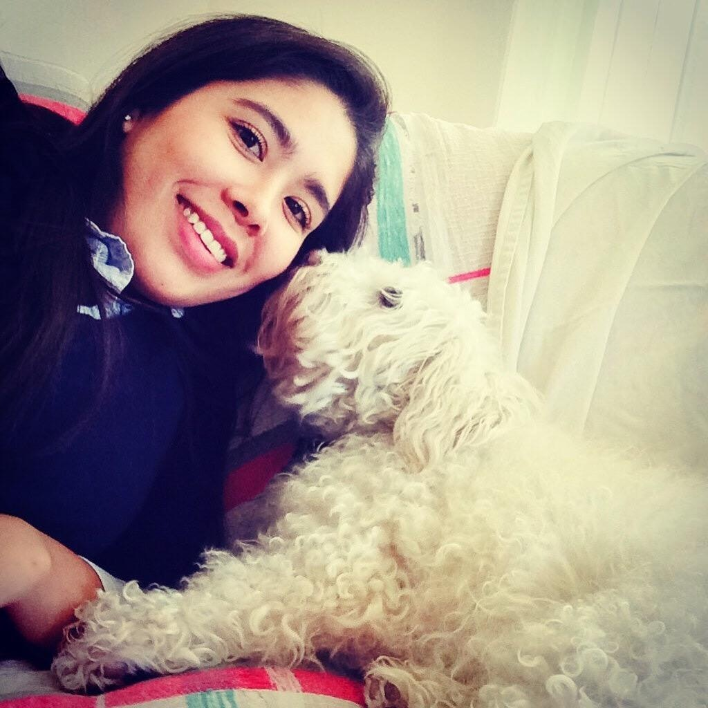 Fatima's dog boarding